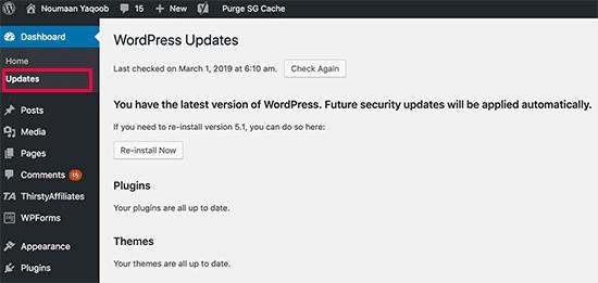 mentinerea platformei WordPress actualizata